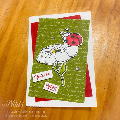 greeting card with daisy and ladybug with the words you're so sweet
